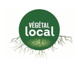 Récolte de Végétal Local à Savenès