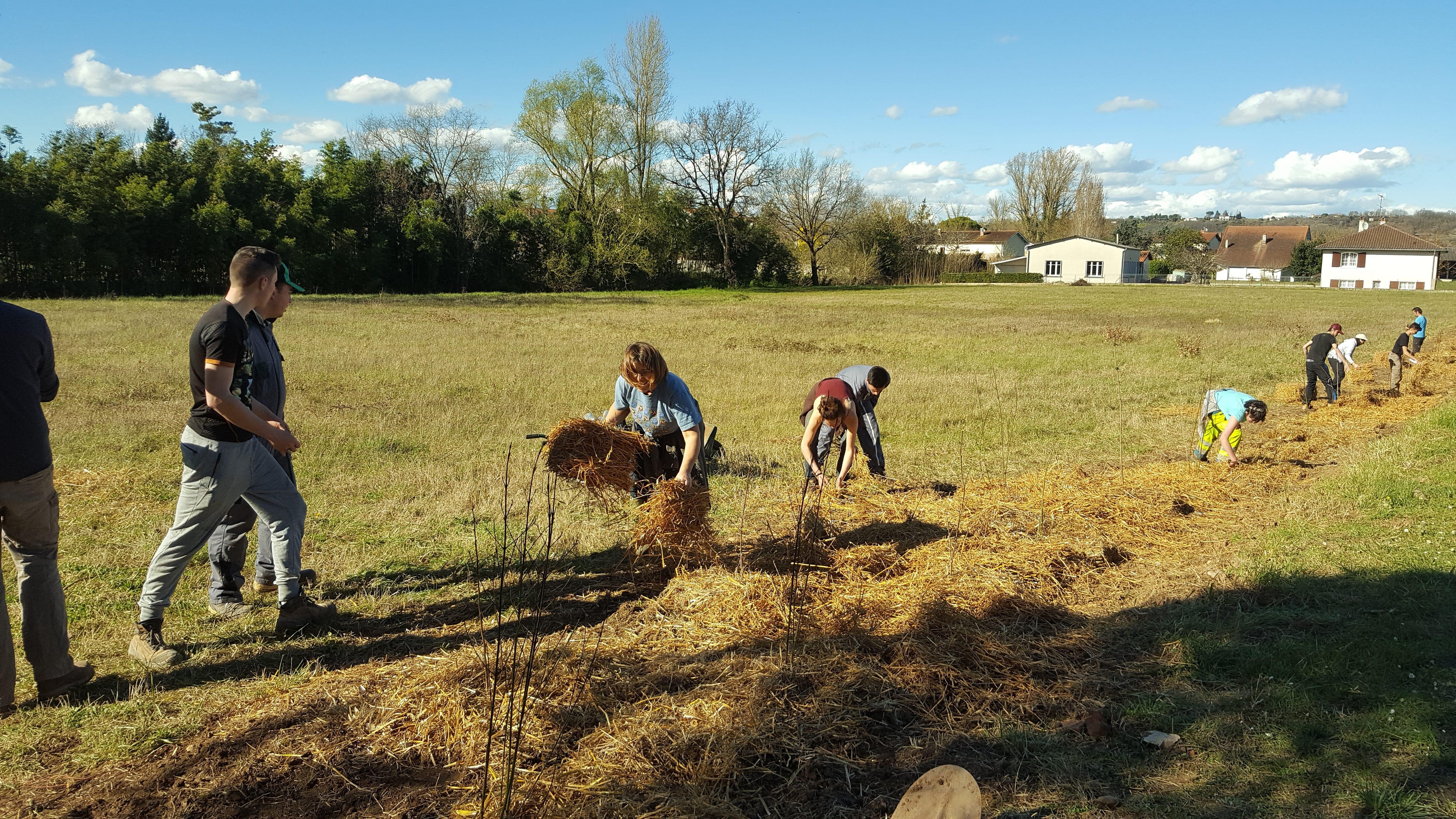 Campagnes Vivantes 82 et les lycées agricoles