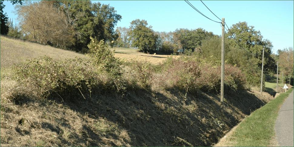 Régénération Naturelle Assistée (ACV82)