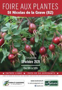 Foire aux plantes de La Salicaire
